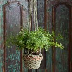 Large Crochet Plant Holder
