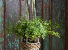 Large Crochet Plant Holder